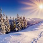 Зимнее Солнцестояние. Ритуалы
